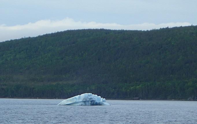 ニューファンドランド島で見た氷山