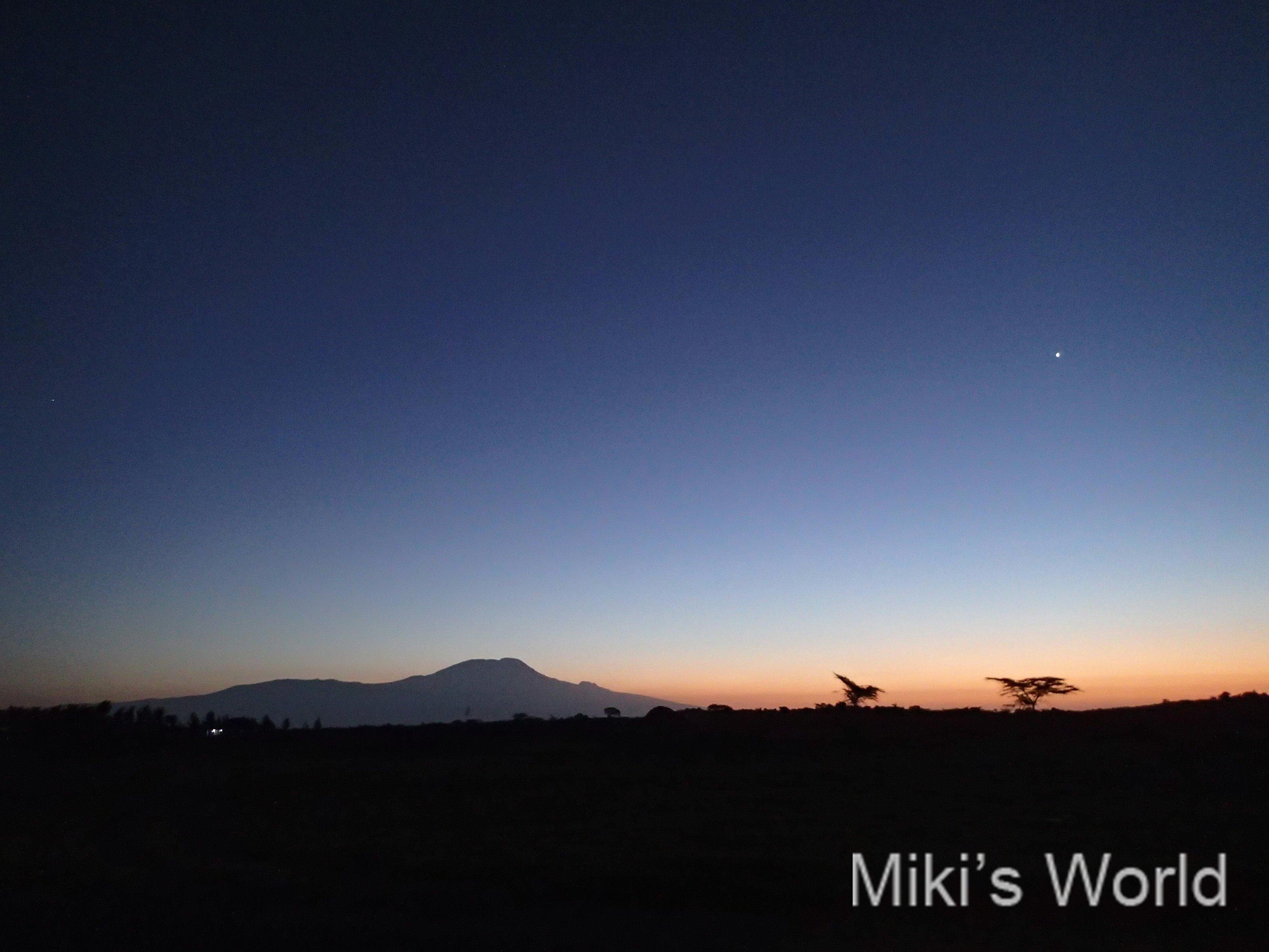 キリマンジャロ山の夜明け、朝日とキリンのアルーシャ国立公園