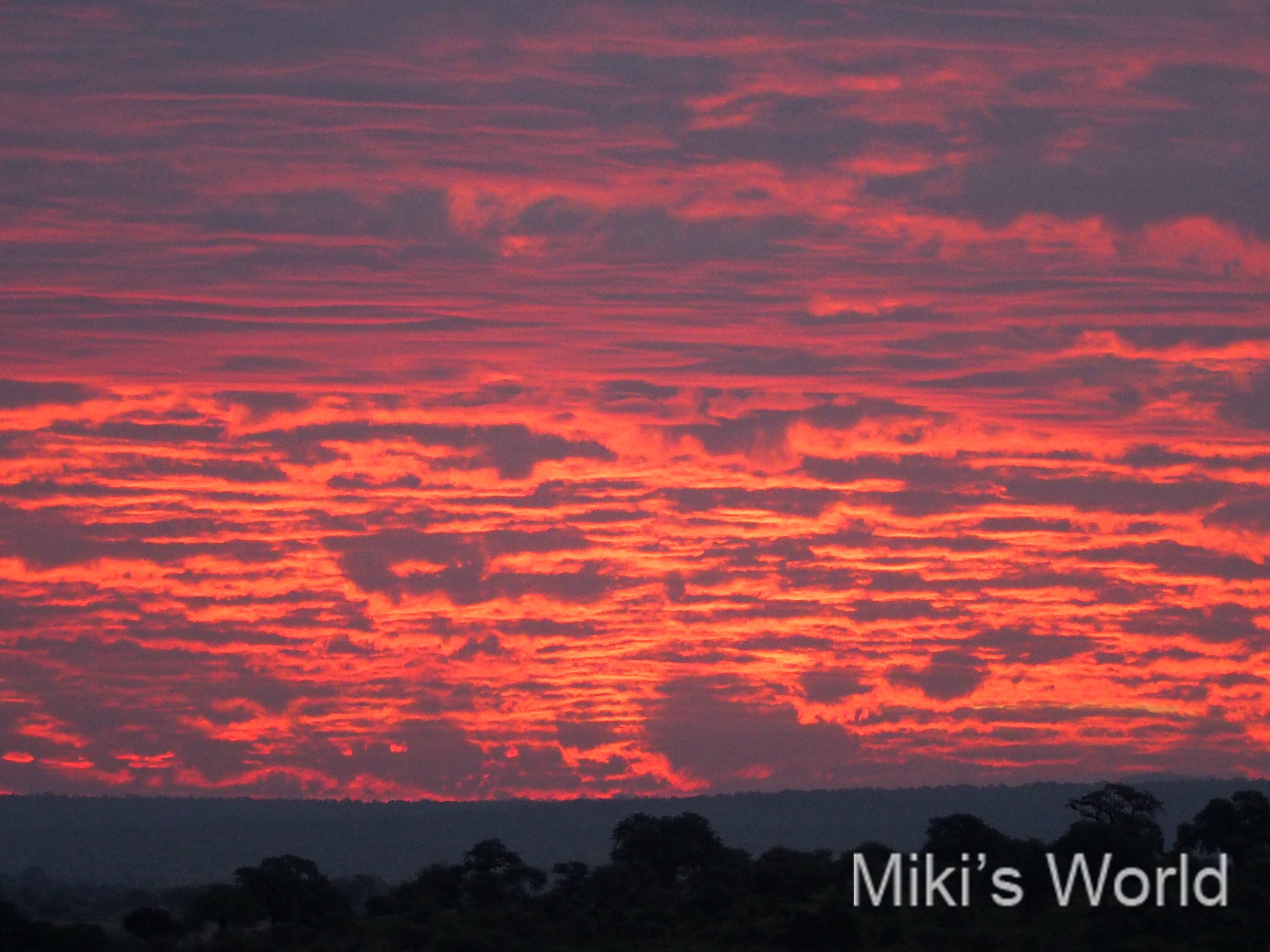 タンザニアの朝日が照らす雲