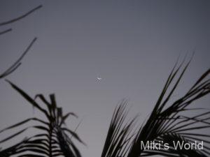 マダガスカル イファーティ―の町の空の月