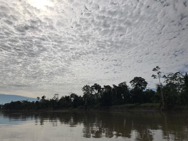 ペルーとアマゾニア  アマゾニアとはアマゾン川流域のこと