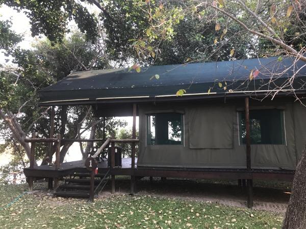 ボツワナ オカバンゴ川 パンハンドルエリアの宿でのカバの糞観察