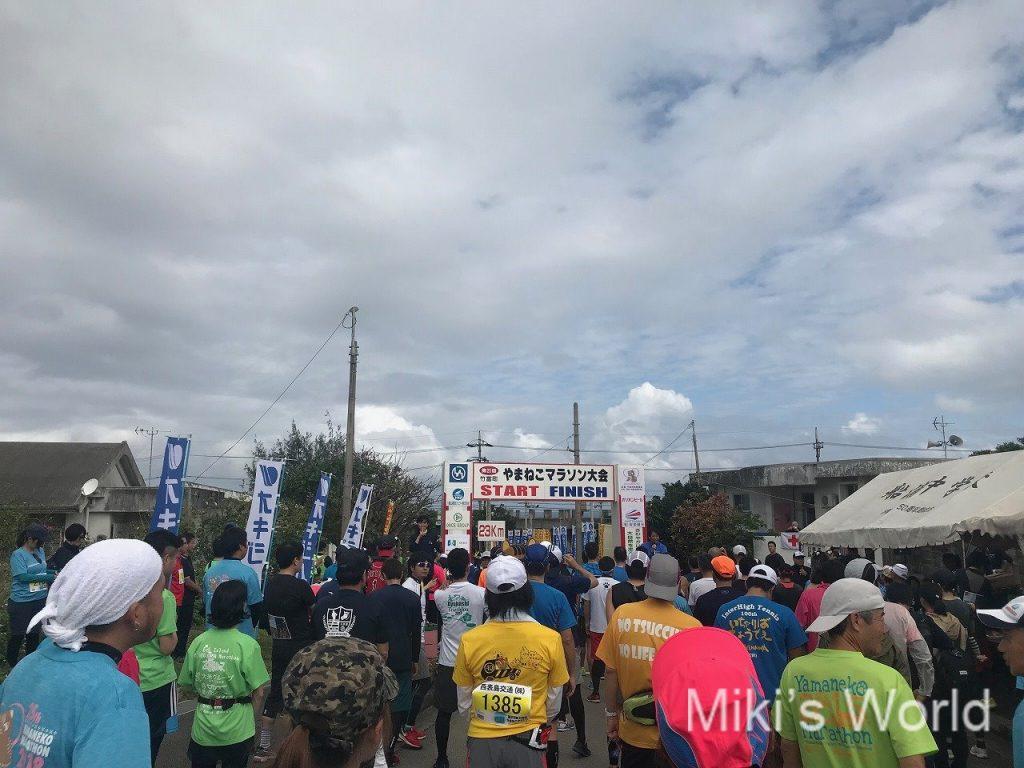 2018やまねこマラソン23キロ完走後の気づき3 本番直前にたくさん走ってはいけない