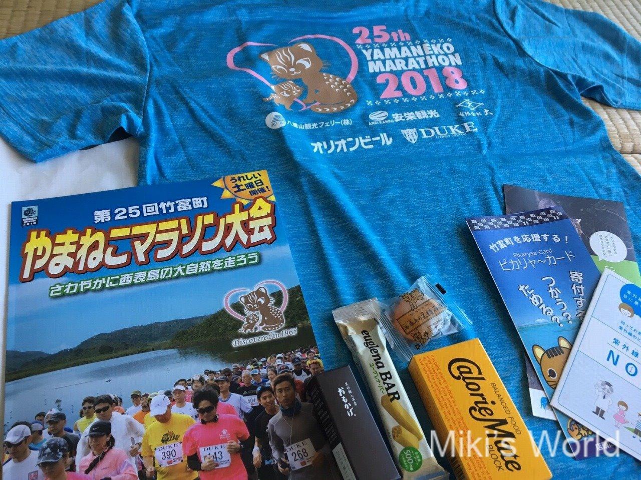 2018やまねこマラソン23キロ完走後の気づき2 ぶっつけ本番でもなんとかなったけど次は試したい