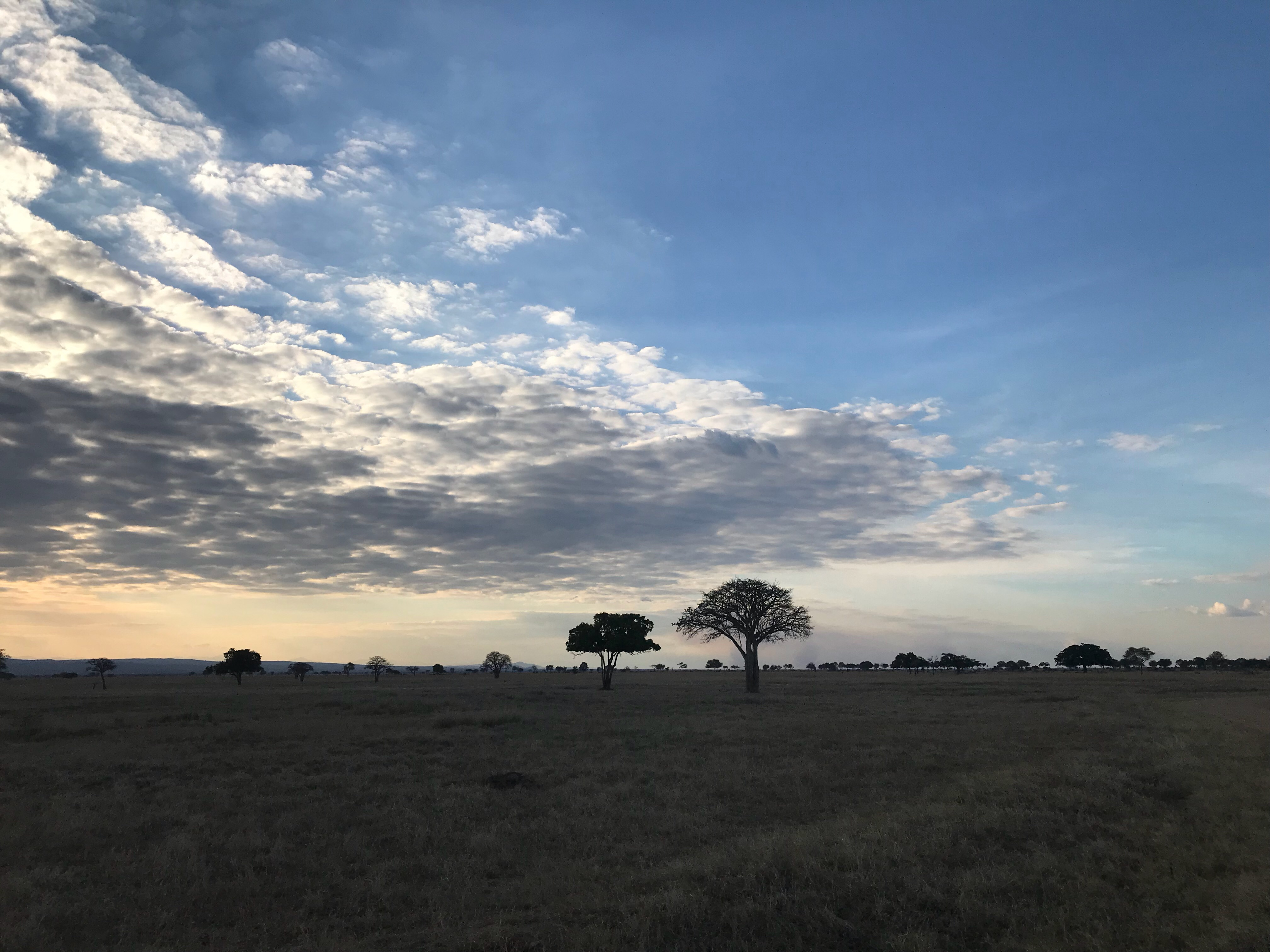 アフリカ旅行へは、防寒具が必須です!   アフリカより辛い日本の夏