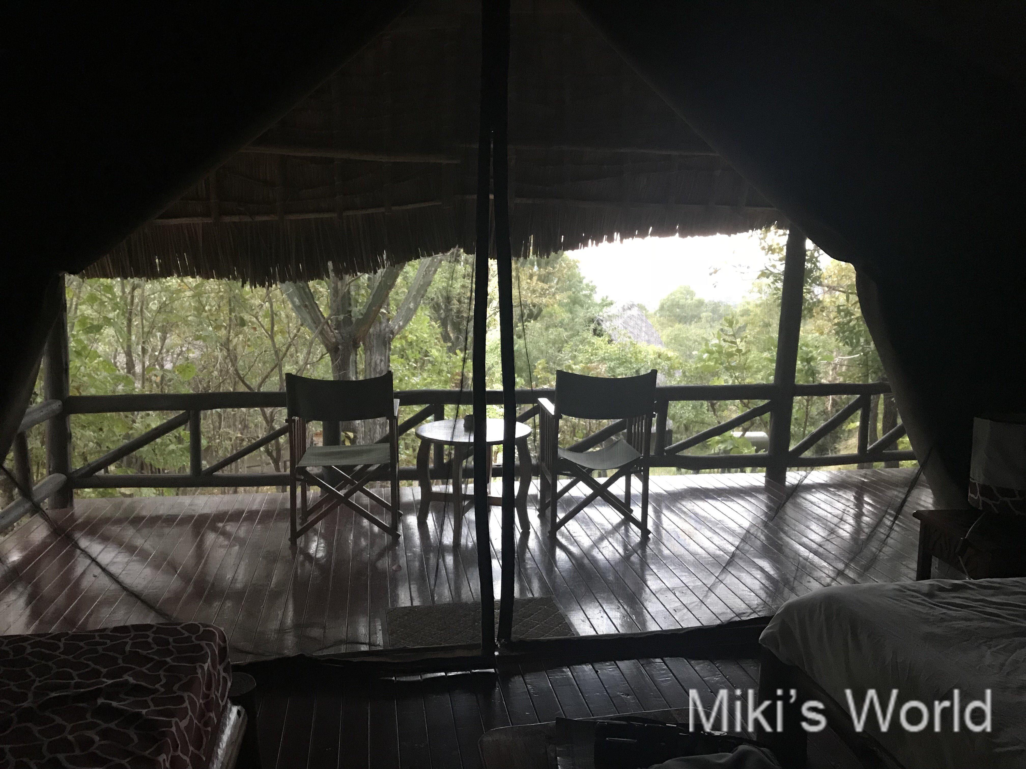 南部タンザニア ミクミ国立公園 ブマ ヒルズ ホテルからおはようございます!