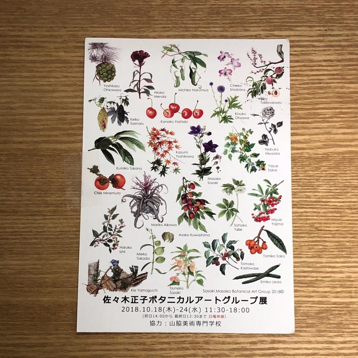 佐々木正子ボタニカルアートグループ展 市ヶ谷駅そば 10/24(水)迄 無料 植物の好きな方はぜひ!