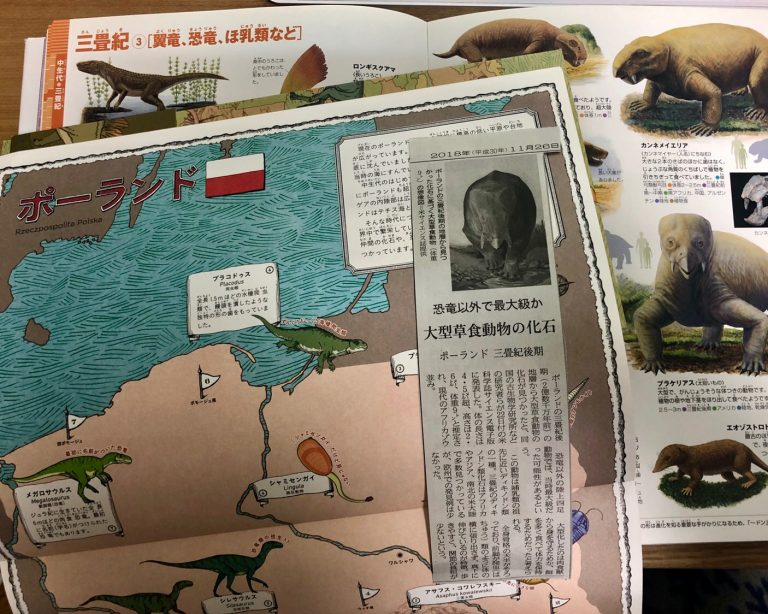 三畳紀(さんじょうき)後期 ポーランド 恐竜以外で最大級?の大型草食動物の化石が見つかる