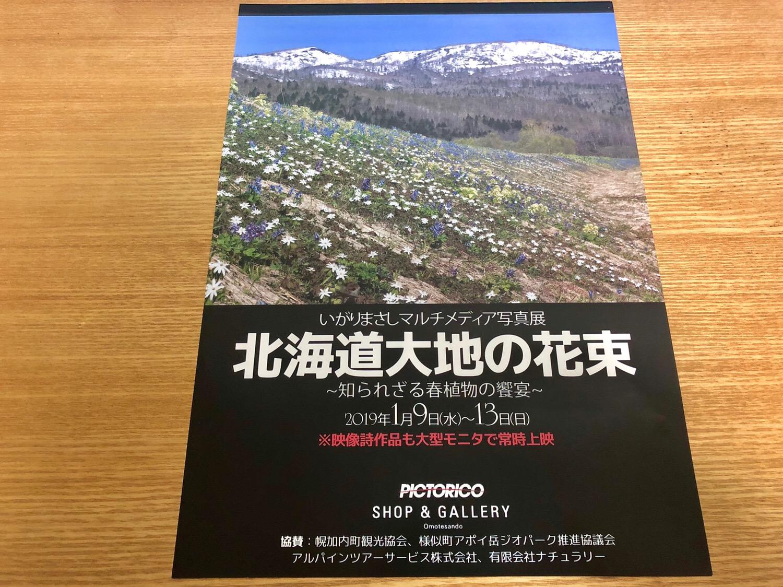 いがりまさしさん 表参道でマルチメディア写真展 北海道大地の花束 ~知られざる春植物の饗宴~