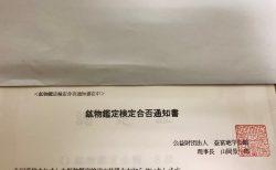 鉱物鑑定検定合否通知書 到着!