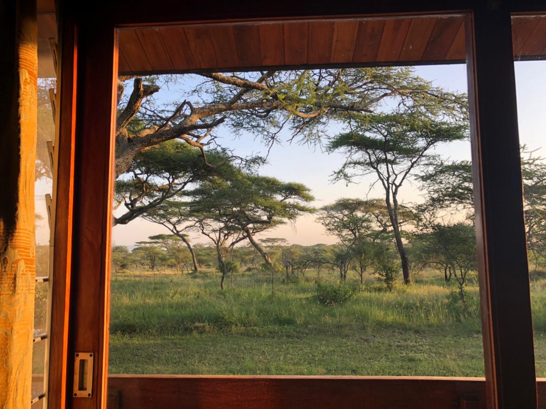 北部タンザニア(Northern Tanzania) サファリツアー(safari)での Wi-Fi使用事情