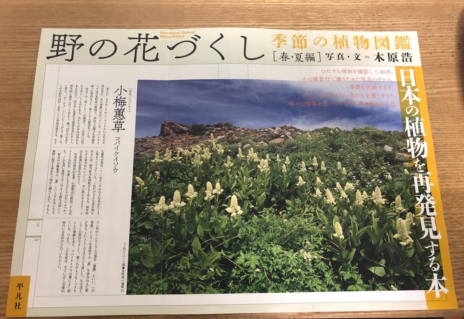 野の花づくし 季節の植物図鑑 [春・夏編] 写真・文=木原浩さん 2019年2月20日に刊行
