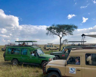 サファリカーってどんなの? 車種はトヨタのランドクルーザー、座席数は7席が一般的 東アフリカ・タンザニアの場合