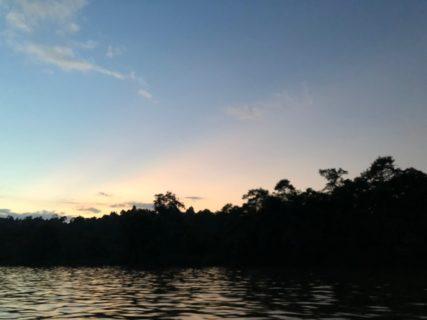 最終日のボルネオ島(Borneo)からおはようございます!