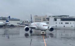 メキシコシティに直行便でいける アエロメヒコ デルタ航空がチェックイン業務引き受け