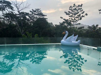 中米パナマ 初探鳥の旅 1日目