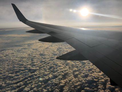 エクアドル アンデスとアマゾン 探鳥の旅から帰国しました