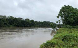 エクアドル・アマゾン 旅行に最適なのはいつ? 熱帯雨林の雨季は何月か?