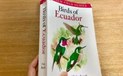 エクアドルの鳥図鑑 Helm社がおすすめ 約1,160グラム