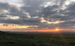 モンゴルの旅 バイアグラ事件 モンゴル語は発音が難しい