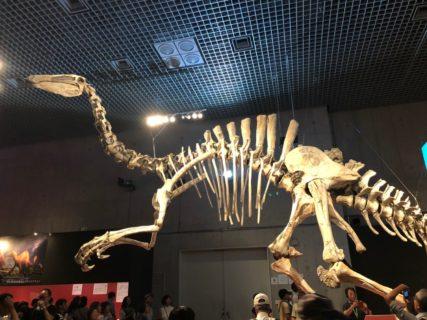 恐竜博2019 10月14日(月)祝日まで開催 デイノケイルス、カムイサウルス(むかわ竜)にあえる!
